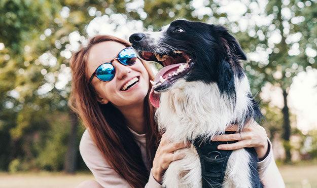 Pet Play Area & Dog Park